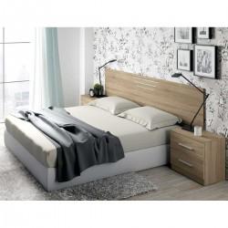 Dormitorio con Cabezal y Mesitas